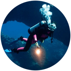 maui-diving
