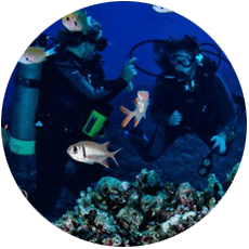 scuba-instruction